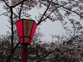 ②和歌山城.JPG